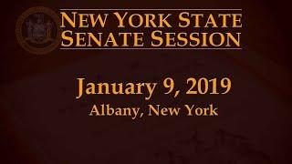 NYS Senate Session - 1/9/19