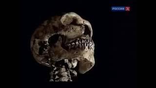 BBC: Планета первобытных людей: Человек разумный против неандерталеца / 2 серия
