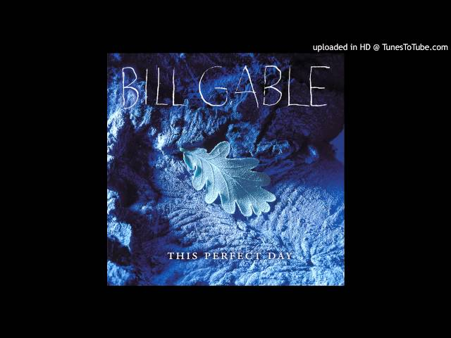 "Bill Gable - ""Center of My Universe"" [This Perfect Day]"