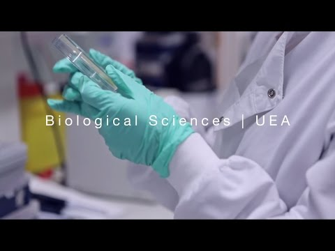 Biological Sciences | University of East Anglia (UEA)