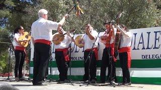 Día De Los Verdiales En Torremolinos, Málaga 2015