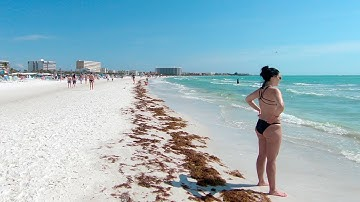 Siesta Key Beach, Sarasota, Florida | Walking Tour