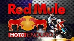 RED MULE rando à Saint Félix de Villadeix 26 10 2019