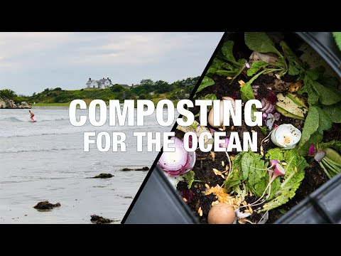 Composting for the Ocean -- Food waste that protects soil 🌱 & sea 🌊