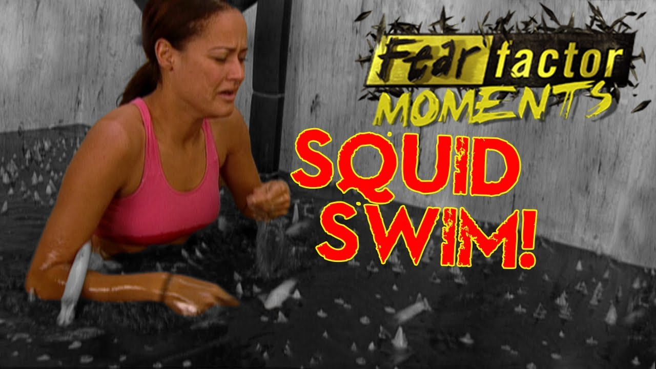 fear factor moments swimming with squid youtube