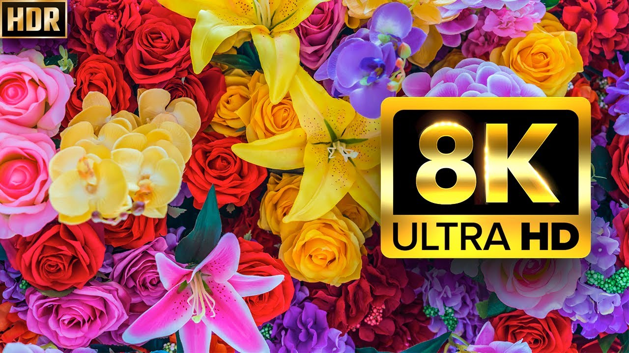 The Largest Flower Collection in the World 8K HDR 60FPS DEMO