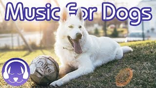How to Relax Your Dog  15 Hours of Deep Relaxation Music for Dogs! (2019!)