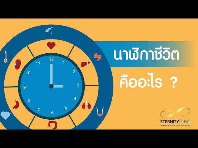 EP 1 Biological Clock การนอนกับนาฬิกาชีวิต สัมพันธ์กันอย่างไร