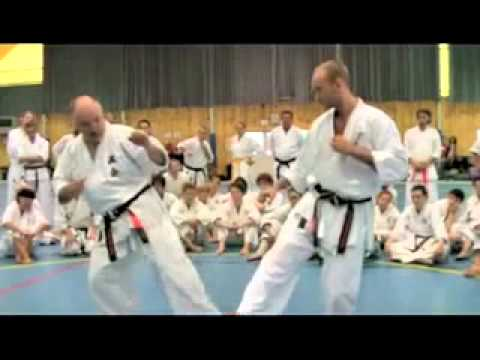 Karate Makotokai, Bohinj seminar 2010 - 2nd part