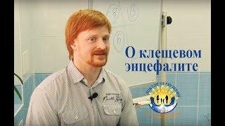 Про прививки от клещевого энцефалита