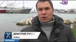 Телесюжет об акуле гоблине_Educational movie is used on batrachos.com