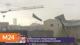 Смотреть видео Климатологи предупредили об ураганах и штормах в Москве - Москва 24 онлайн