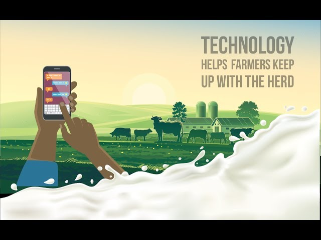App that makes dairy operations more efficient