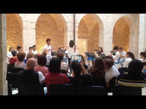 Orchestra di Flauti:The mission di E.Morricone-Tracrizione di A.Pascali