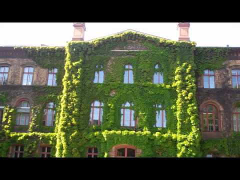 Wittenau Sanatorium (Verruckt)