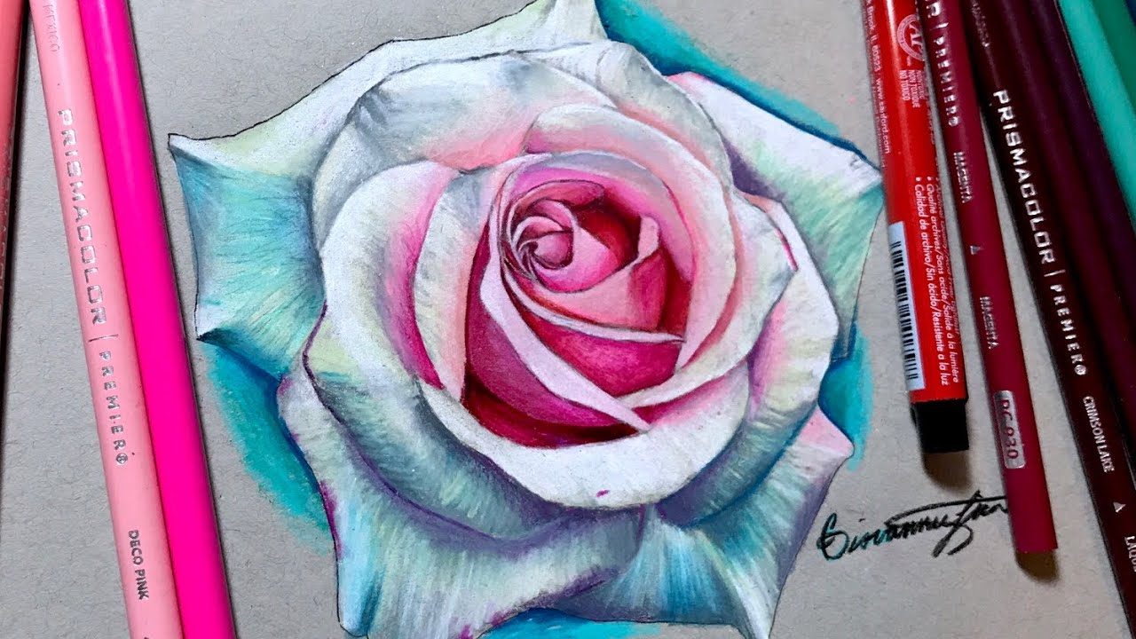Realistic Rose Drawing Using Prismacolor - Timelapse - YouTube