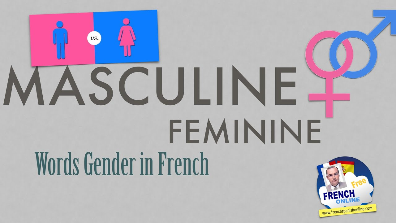 how to learn french gender