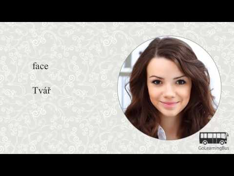 Learn Czech Visual Dictionary - Body Parts via Videos by GoLearningBus(3J)