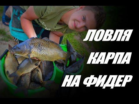 фидерная рыбалка фильм