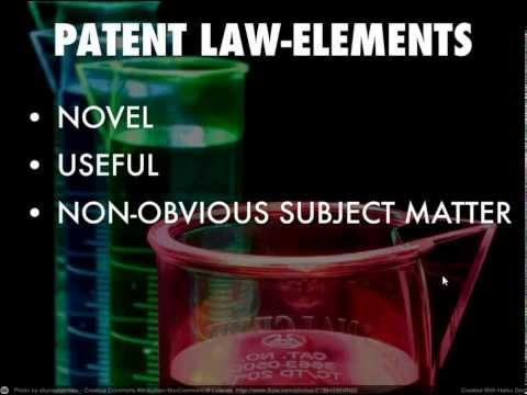 U.S. Intellectual Property Law-Patent Law Overview