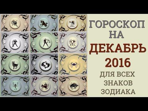 ПРОГНОЗ АСТРОЛОГА НА 2016 ГОД ОБЕЗЬЯНЫ. Гороскоп на 2016