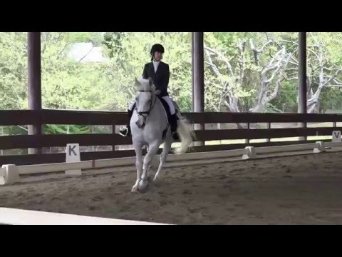 Olympian & Jackie Stallcup - Intro Level, Test C - ICC Spring Schooling Dressage Show 2016