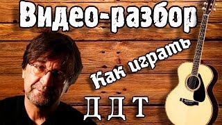 ДДТ Осенняя как играть на гитаре, видео урок, разбор для начинающих Без БАРРЭ