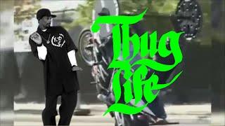 THUG LIFE VIDEOS DAHORA | ESPECIAL 30000 INSCRITOS