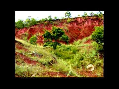 Piauí que trabalha mostra a desertificação do Piauí e os projetos para o solo - PARTE I