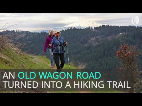From wagon road to hiking trail behind the Columbia River Gorge