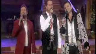 Die großen Drei der Volksmusik - Junge Träume 2008