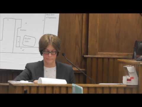 Key testimony: Forensic scientist Kandy Smith talks DNA evidence