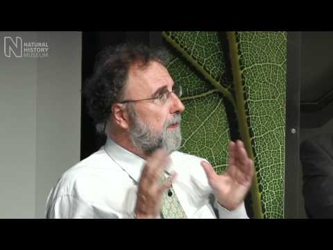 The Big Nature Debate - What is Biodiversity?   Natural History Museum