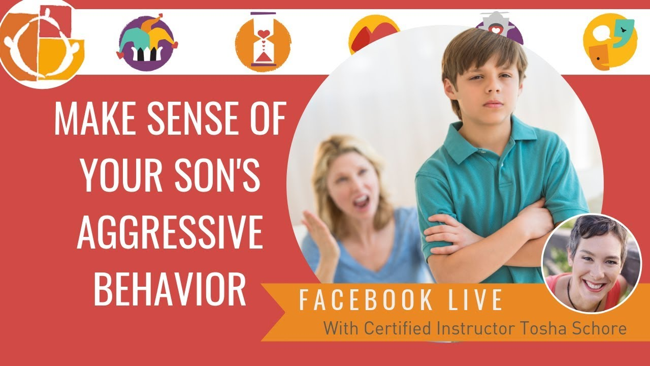 Make Sense of your son's aggressive behavior