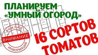 Планируем Умный огород 2018. 16 сортов томатов, грядка митлайдера.