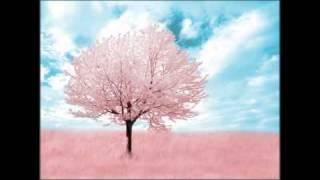 Robert Babicz - Pink Trees (Original Mix)