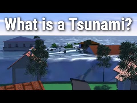 Anatomy of a Tsunami