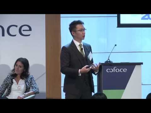 Coface Country Risk Conference 2015 - Rocky Tung - Asia