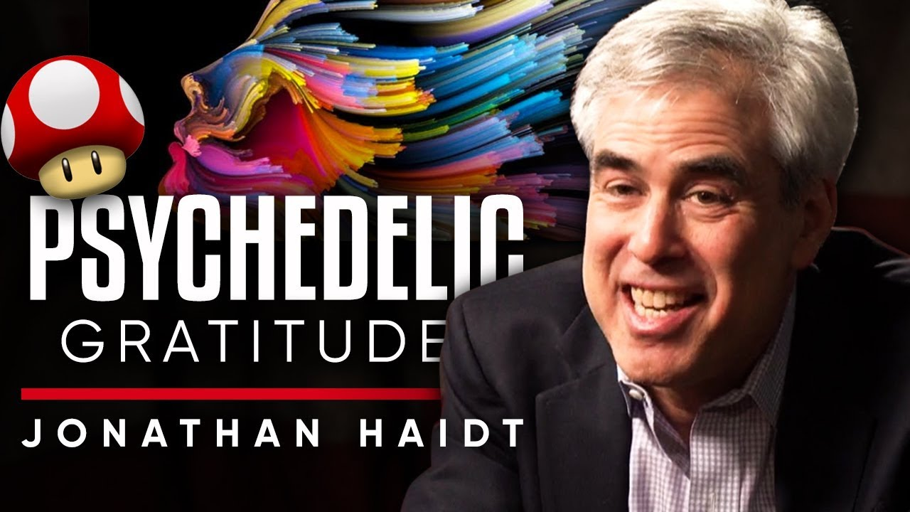 JONATHAN HAIDT - GRATITUDE TO PSYCHEDELICS: Why Are Psychedelics Beneficial To The User | LondonReal