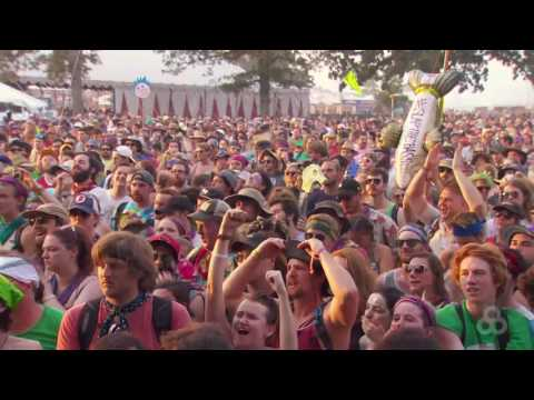 Ween   2016-06-12   Bonnaroo Music & Arts Festival 720p by jakezen72