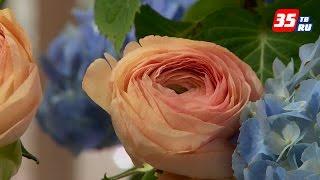 Какие цветы модно дарить в этом году на 8 марта