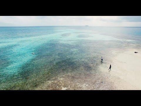 Aquaculture by Design, Belize