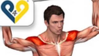 Кубинское вращение - упражнение для плеч
