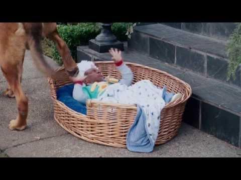 Видео Смотреть шалун онлайн фильм в хорошем качестве 720