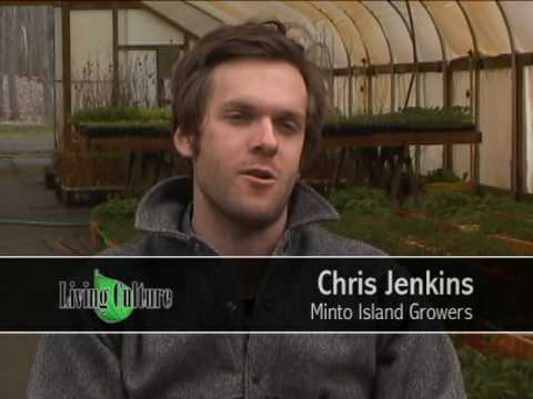 Growing organic vegetables at Minto Island Growers