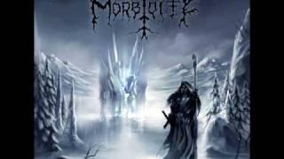 Morbidity Servants Of The Unholy Night