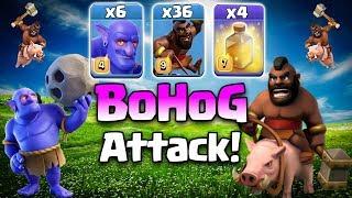 BoHog Th12 Attack Strategy 2019! 36 Max Hog + 6 Max Bowler 3star TH12 War Attack | Clash Of Clans