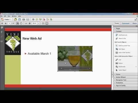 Manipulating PDF Documents