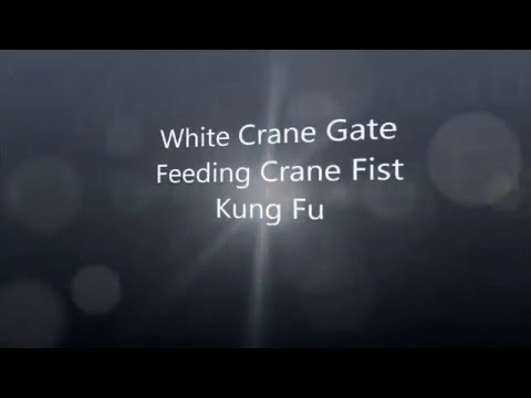 Liu Chang I Feeding Crane System Information Video