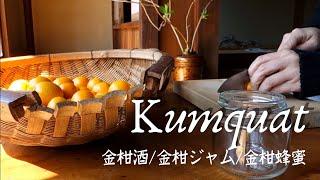 3 different Kumquat recipe. Liquor,Jam,honey marinade.春のキンカン3変化。金柑酒・金柑ジャム・蜂蜜金柑